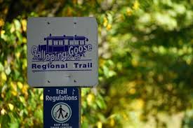 Your input sought re changes to Galloping Goose, Lochside